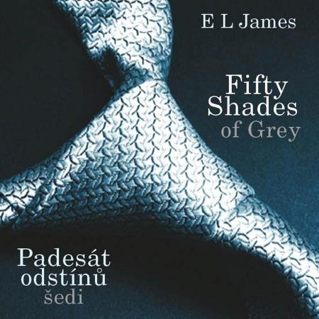 James L E - Fifty Shades of Grey: Padesát odstínů šedi (audiokniha)
