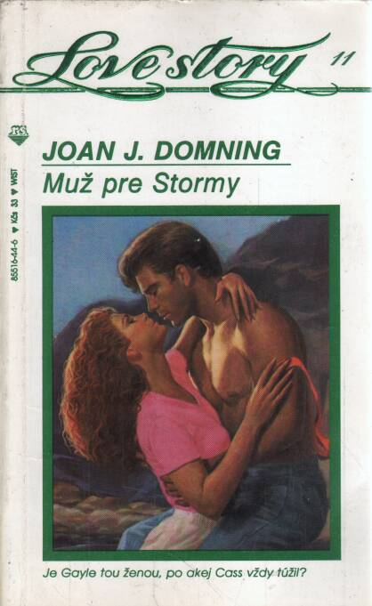 Domning J. Joan - Muž pre Stormy